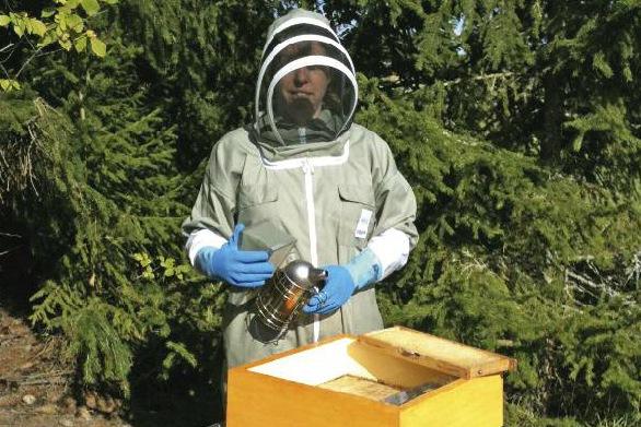 Sylvia Ljung ser biodling som framtiden